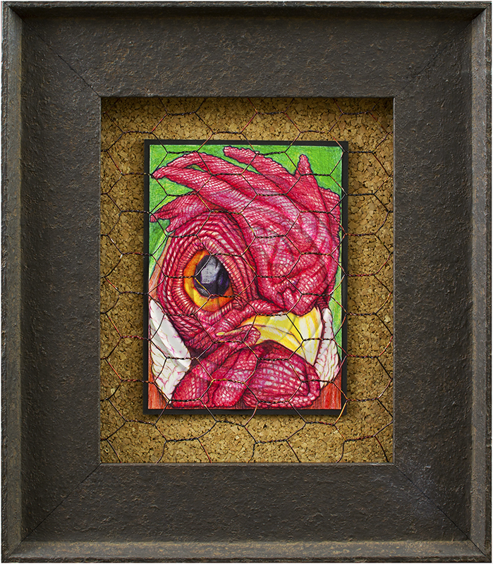 Rooster fenced in a frame